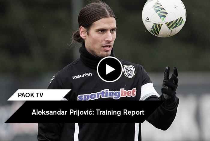 prijovic_training_feat